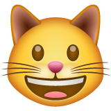 Grinning Cat on WhatsApp 2.20.206.24