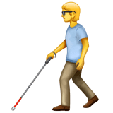 Person with White Cane on WhatsApp 2.20.206.24