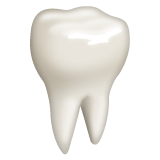 Tooth on WhatsApp 2.21.11.17