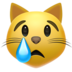 Crying Cat Face